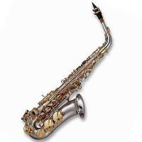 Купить в интернете Саксофон LIVINGSTONE KAS-102L